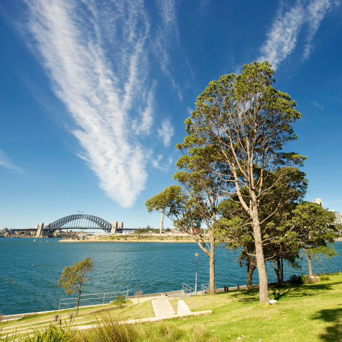 18 NSW councils sign 39GWh per year landmark renewable energy agreement to cut emissions and costs – Media release – 3 October 2018